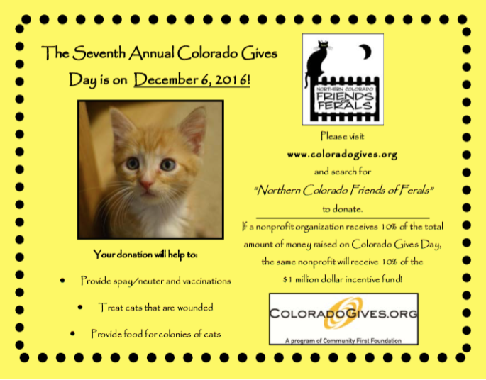 Colorado Gives Day Friends of Ferals